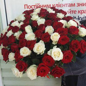 букет 101 красная и белая роза в Ровно