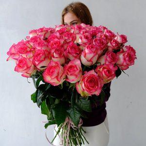 51 бело-розовая роза Джумилия
