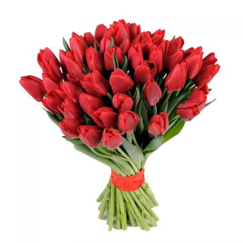 Фото товара 51 красный тюльпан в Ровно