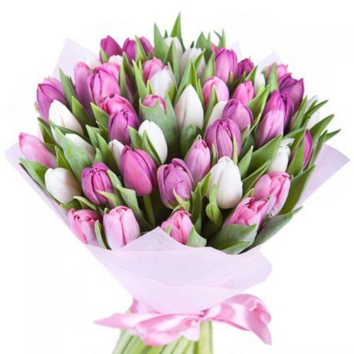 Фото товара 51 бело-розовый тюльпан в Ровно