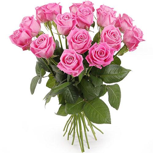 "букет 15 рожевих троянд ""Аква"""