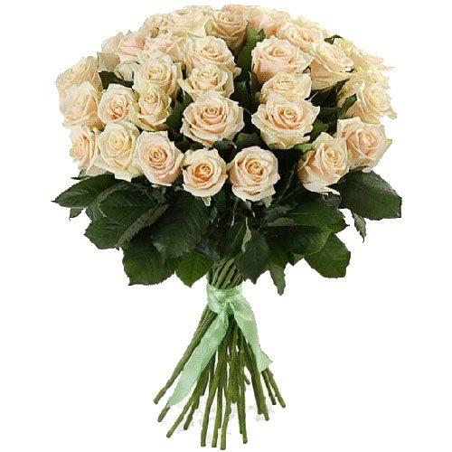 33 кремові троянди фото букета