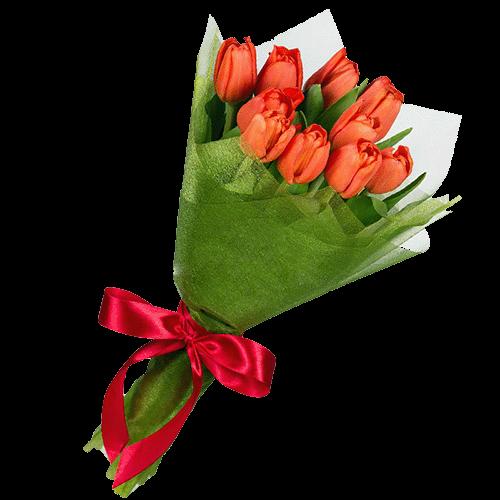 Фото товара 11 красных тюльпанов в Ровно