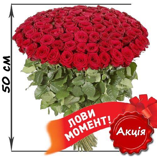 Фото товара 101 червона троянда (50см) в Ровно