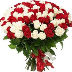 Фото товара 101 червона і біла троянда в Ровно