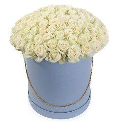 Фото товара 101 троянда біла у капелюшній коробці в Ровно
