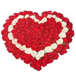Фото товара 101 троянда серцем: червона, біла, червона в Ровно