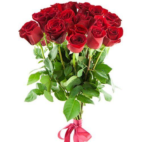 Фото товара 15 імпортних троянд в Ровно