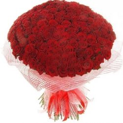 Фото товара 201 червона троянда в Ровно