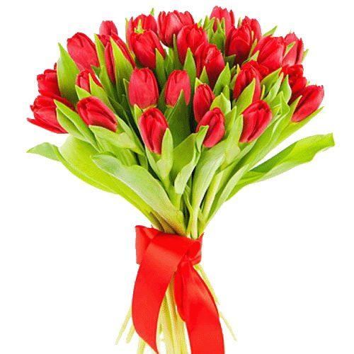 Фото товара 25 червоних тюльпанів в Ровно
