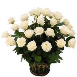 Фото товара 35 білих троянд в кошику в Ровно