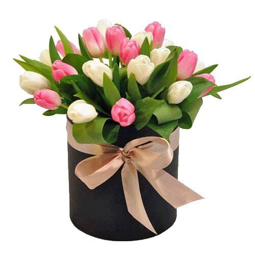 Фото товара 25 тюльпанів у коробці в Ровно