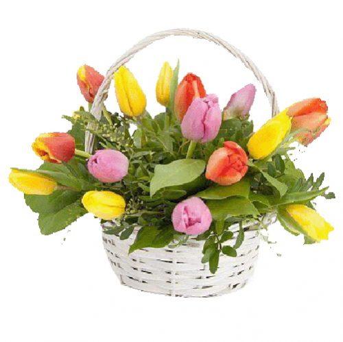 Фото товара 15 тюльпанів у кошику в Ровно