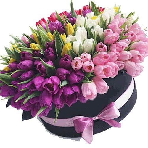 Фото товара 151 тюльпан у капелюшній коробці в Ровно