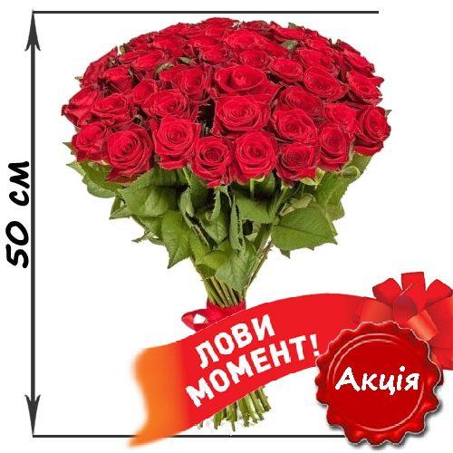 Фото товара 51 червона троянда (50см) в Ровно
