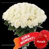 Фото товара 51 біла троянда (50 см) в Ровно
