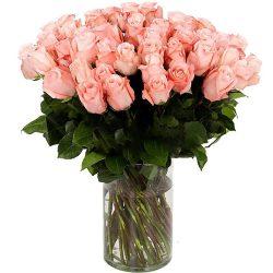 Фото товара Роза импортная розовая (поштучно) в Ровно