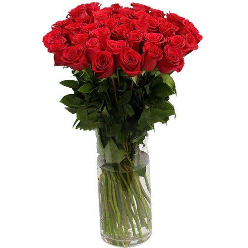 Фото товара Роза импортная красная (поштучно) в Ровно