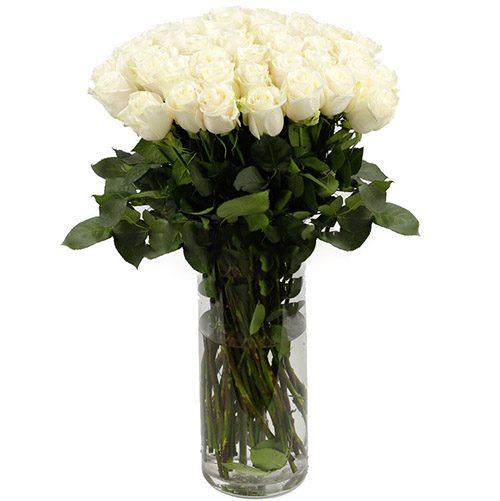 Фото товара Роза импортная белая (поштучно) в Ровно
