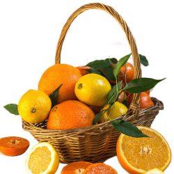 фото товара Корзина витаминов цитрусы