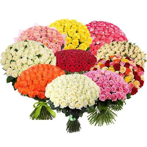 товар 1001 роза разных сортов
