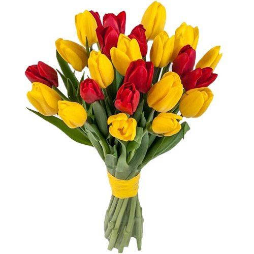 Фото товара 15 красно-жёлтых тюльпанов (с лентой) в Ровно