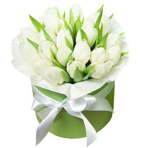Фото товара 21 белый тюльпан в коробке в Ровно