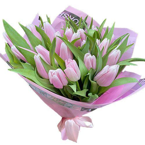 Фото товара 21 нежно-розовый тюльпан в Ровно