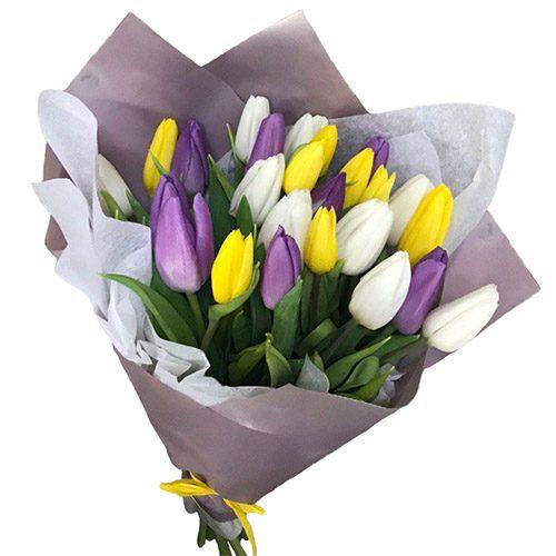 """Фото товара 25 тюльпанів """"Княгиня"""" в Ровно"""