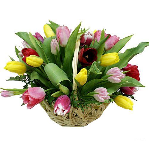 Фото товара 25 тюльпанів мікс у кошику в Ровно