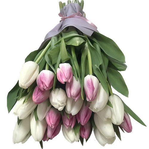 Фото товара 25 бело-розовых тюльпанов в Ровно