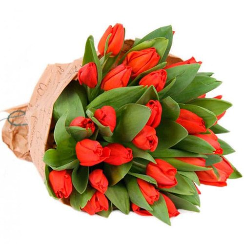 """Фото товара 35 червоних тюльпанів у """"газеті"""" в Ровно"""