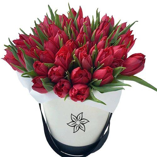 Фото товара 45 червоних тюльпанів у коробці в Ровно