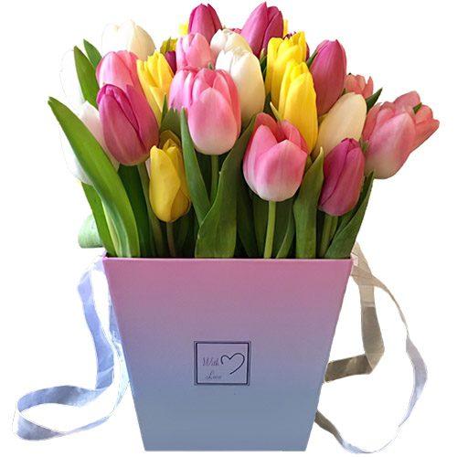 """Фото товара 31 тюльпан """"Весенний ветер"""" в квадратной коробке в Ровно"""