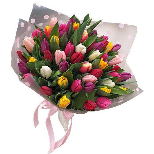 Фото товара 51 тюльпан мікс (всі кольори) в Ровно