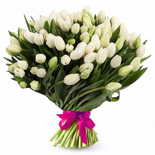 """Фото товара 51 білий тюльпан """"Джульєтта"""" в Ровно"""