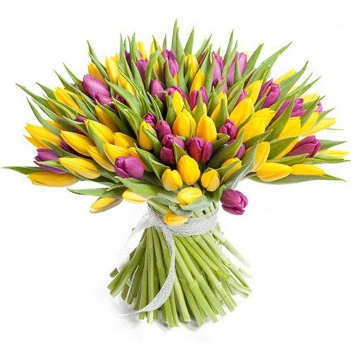 Фото товара 75 фіолетово-жовтих тюльпанів в Ровно