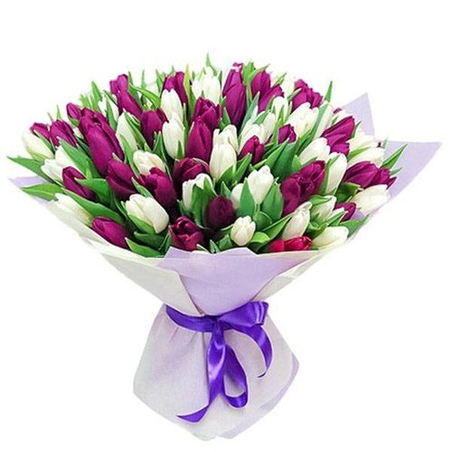 Фото товара 75 пурпурно-білих тюльпанів в Ровно