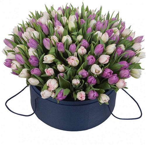 Фото товара 201 тюльпан (два цвета) в коробке в Ровно