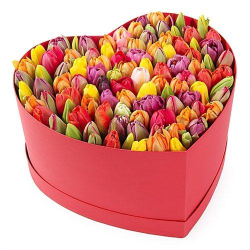 Фото товара 101 тюльпан в коробке сердцем в Ровно