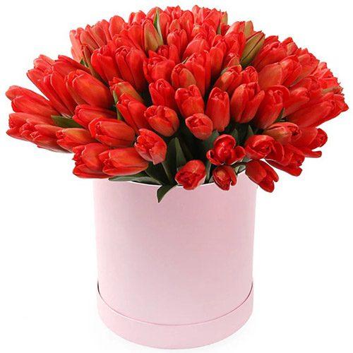 Фото товара 101 красный тюльпан в коробке в Ровно