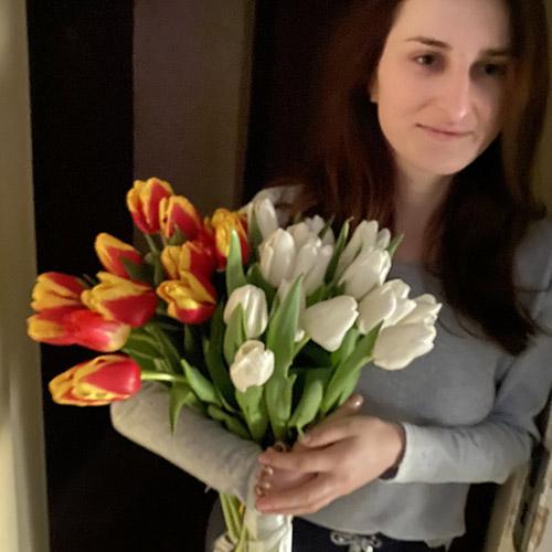 Фото товару 25 тюльпанів